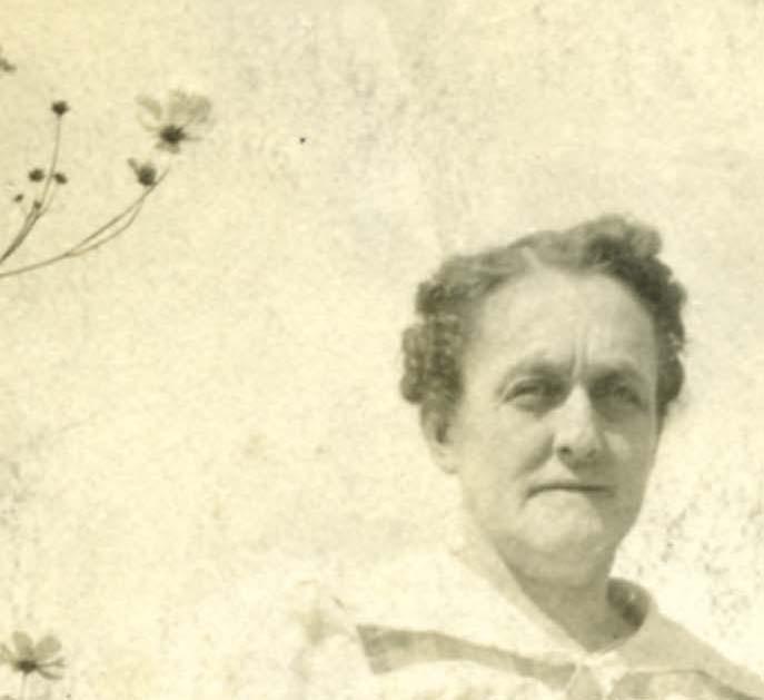 Lily Tatro