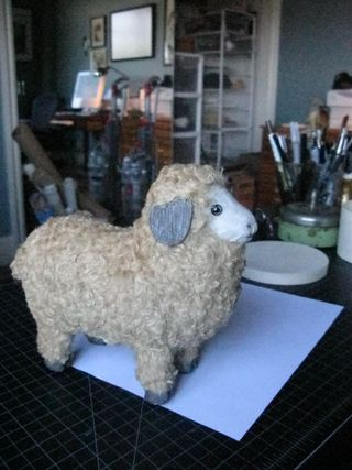 Sheep of the week 623