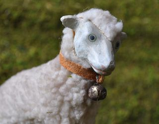 Sheep of the week march 10