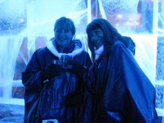 Cynthia and Chris ice bar